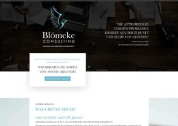 Blömeke Conuslting Webseite